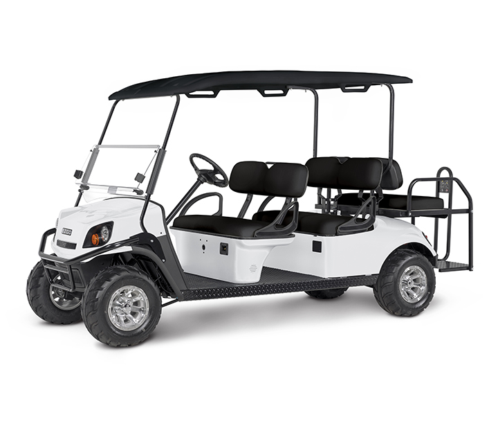 EZGO Express S6 Gas EFI Sample photo / info page for factory order - 0122