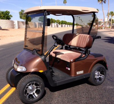 EZGO - RXV Carousel Picture 5