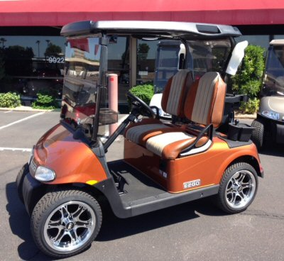 EZGO - RXV Carousel Picture 8